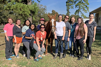 Photo of UTHealth students volunteering at therapeutic equine riding center. (Photo by Audrey Bratton)