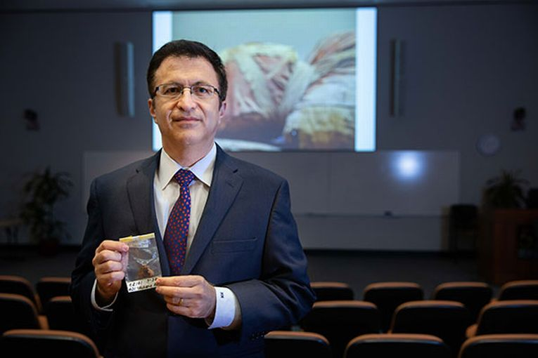 Photo of UTHealth's Mohammad Madjid, MD, MS. (Photo by Maricruz Kwon/UTHealth)
