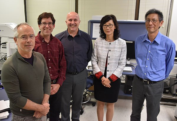 Photo of vision scientists from the left Stephen C. Massey, PhD; John O'Brien, PhD; Christophe Ribelayga, PhD; Jiaqian Wu, PhD; and Chai-An Mao, PhD. PHOTO CREDIT: Rob Cahill, UTHealth