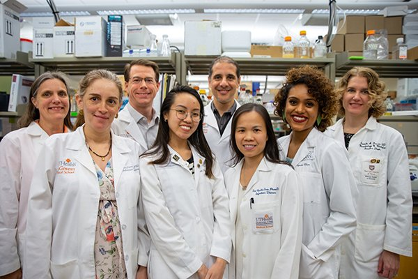 Researchers at The University of Texas Health Science Center at Houston have identified a protein that allows VRE to defy antibiotic treatment.