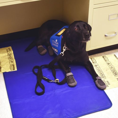 Image of Maxie on her safety pad with spill protection underneath while wearing her protective wear
