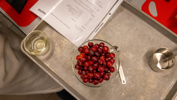 Fresh cranberries in a dish. Photo by UTHealth