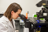 Photo of Rachael Sirianni, PhD, in her lab. Sirianni has teamed up with a researcher from from Arizona State University to look at sex-targeted drug delivery methods for traumatic brain injuries. (Photo courtesy of Alisse Pratt/UTHealth Neurosciences)