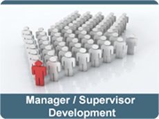 Manager Supervisor Development
