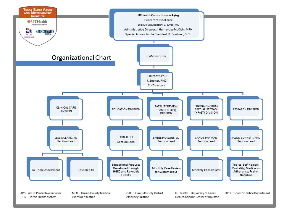 TEAM Institute organization chart