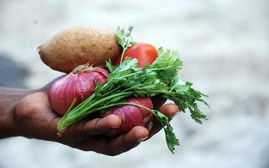 A handful of fresh vegetables