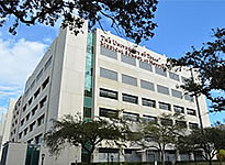 UTHealth School of Medicine
