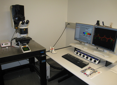 Leica TSC SP5 Confocal Miscroscope