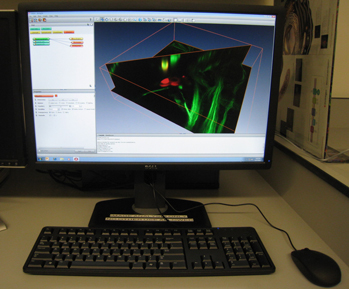 Image Analysis Workstation with Amira Software