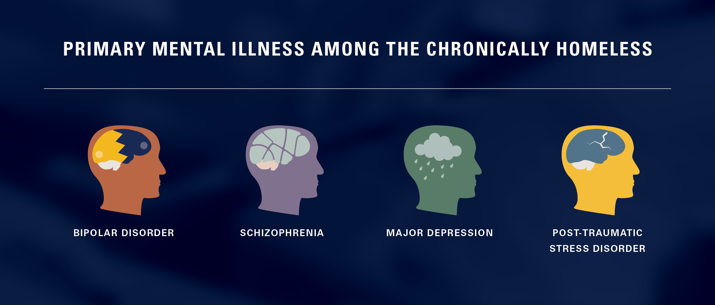 mental illness graphic - bipolar disorder, schizophrenia, depression, ptsd
