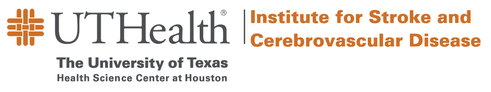The Institute for Stroke and Cerebrovascular Diseases