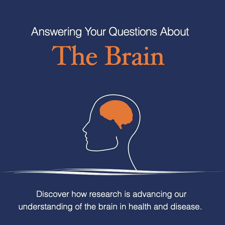 Q & A - Answering Your Questions About the Brain